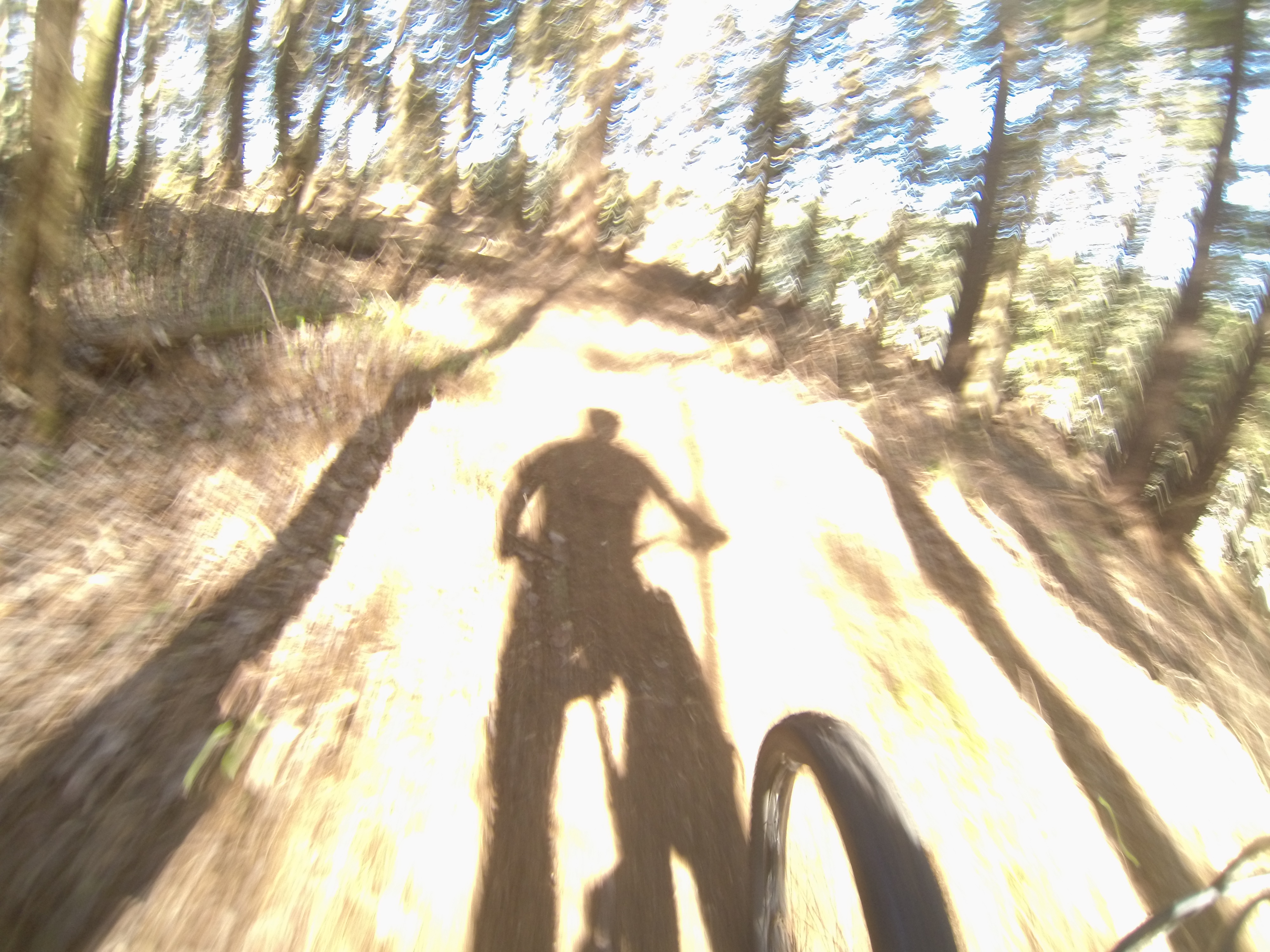 an analysis of the description of mountain biking : see mountain bike proceduredoc data analysis the columns in the spreadsheet are the three strain values followed by the standard deviation for each of the gauges.